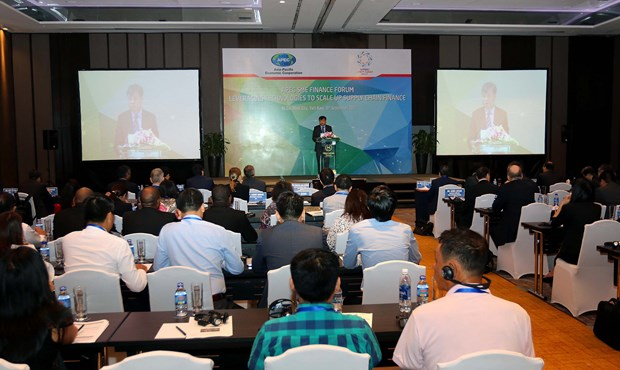 APEC discusses measures to boost MSMEs financial access hinh anh 1