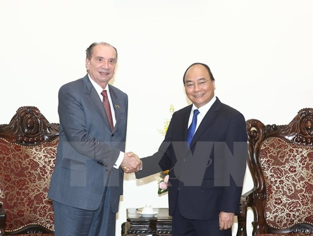 PM expects more Brazilian investments in Vietnam hinh anh 1