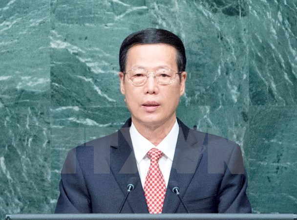 China-ASEAN cooperation sees great progress: Chinese Vice Premier hinh anh 1
