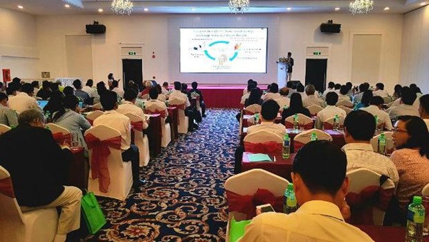 Conference connects Japanese, Mekong Delta firms in environment business hinh anh 1