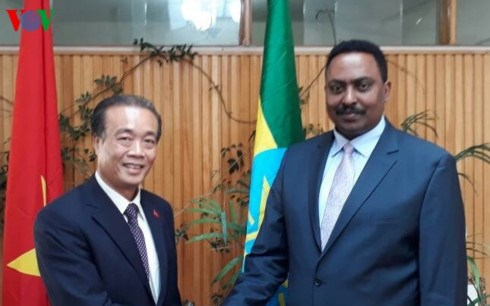 Ethiopia suggests reopening of Vietnamese embassy hinh anh 1
