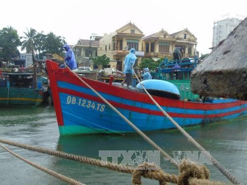 Timely countermeasures needed to minimise losses by storm Doksuri hinh anh 1