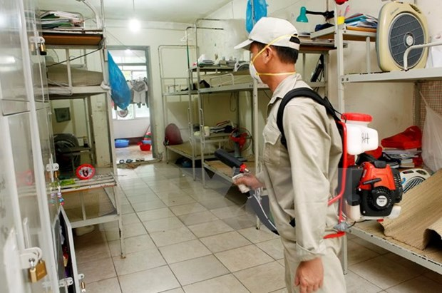 Dengue fever cases nationwide fall hinh anh 1