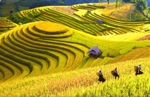 Vietnam named among 20 most beautiful countries hinh anh 1