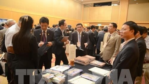Japanese firms seek investment opportunities in Vietnam hinh anh 1