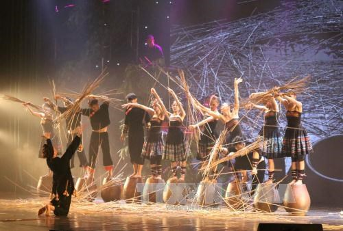 World dance festival opens in Ninh Binh hinh anh 1