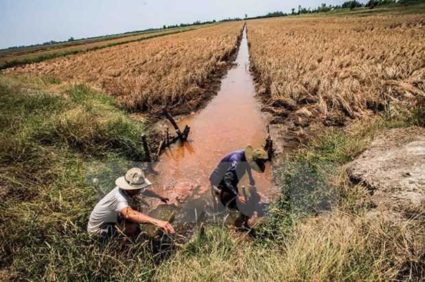 Conference to talk Mekong Delta sustainable development model hinh anh 1