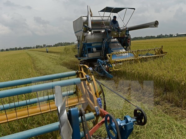 Thailand encourages investment in modern agriculture hinh anh 1