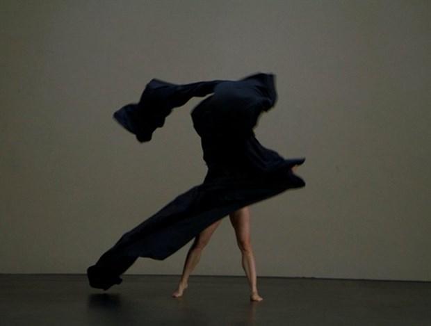 International dance festival kicks off hinh anh 1