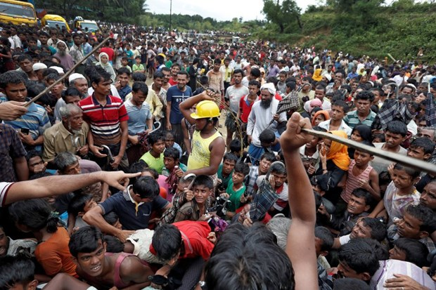 Malaysia calls for urgent action to address Rohingya issue hinh anh 1