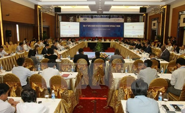 APEC officials give recommendations on disaster management hinh anh 1