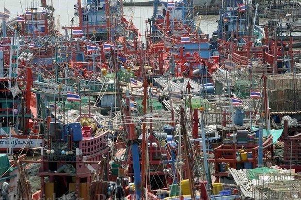 Thai fishermen demonstrate against EU fishing regulations hinh anh 1