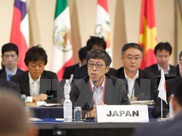 TPP nations achieve progress toward new free trade deal hinh anh 1