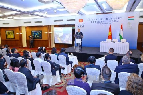 Vietnam, Hungarian businesses seek cooperation opportunities hinh anh 1