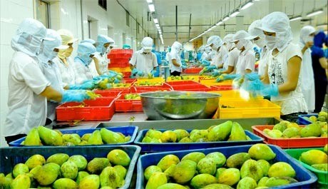 Vietnam strategises to reach yearly export value target hinh anh 1