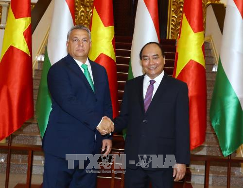 Vietnamese, Hungarian PMs affirm valuing ties during talks hinh anh 1
