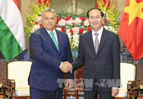 President urges effective use of Hungary's preferential loans hinh anh 1