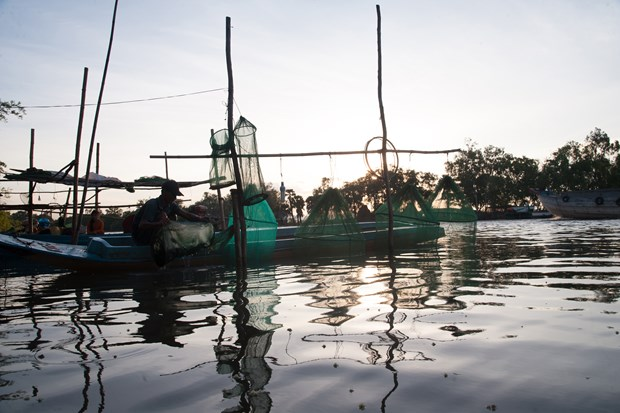Aquatic products expected to rake in 9 billion USD by 2020 hinh anh 1