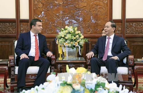 President welcomes newly-accredited foreign ambassadors hinh anh 1