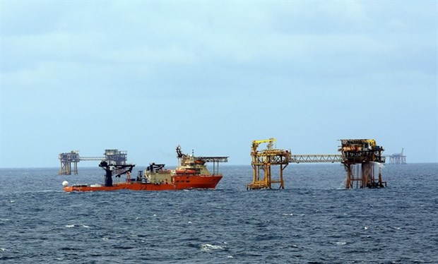 Oil and gas sector urged to adjust business strategy hinh anh 1