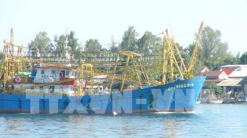 Quang Nam to spend 5 million USD upgrading fishing port hinh anh 1
