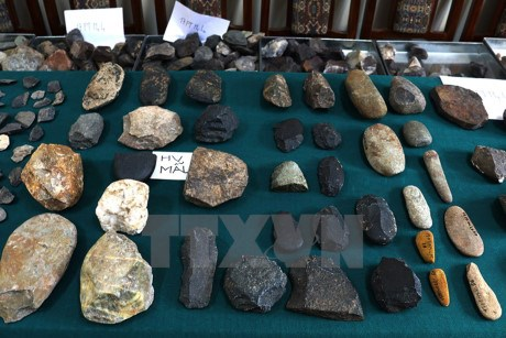 Over 300 reports sent to archaeological conference hinh anh 1
