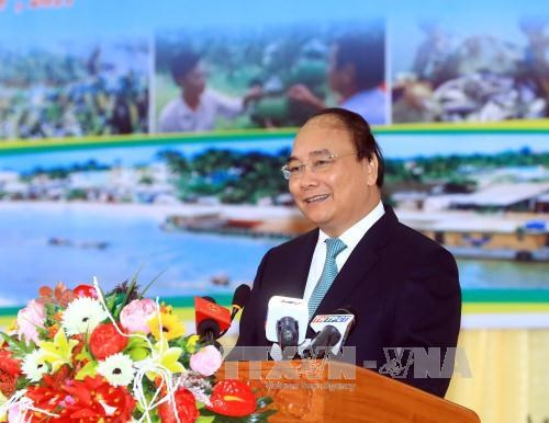 Hau Giang urged to improve business environment to attract investment hinh anh 1