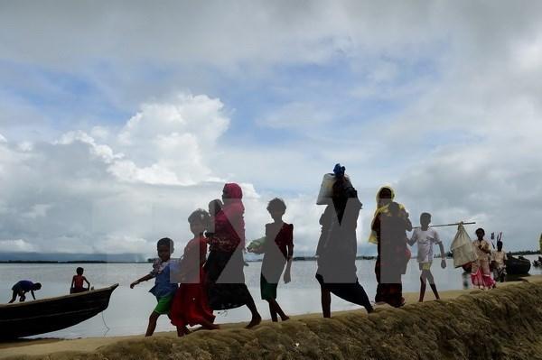 Myanmar allows UN agencies in Rakhine state hinh anh 1