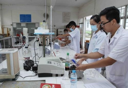 Work-study model promoted for students hinh anh 1