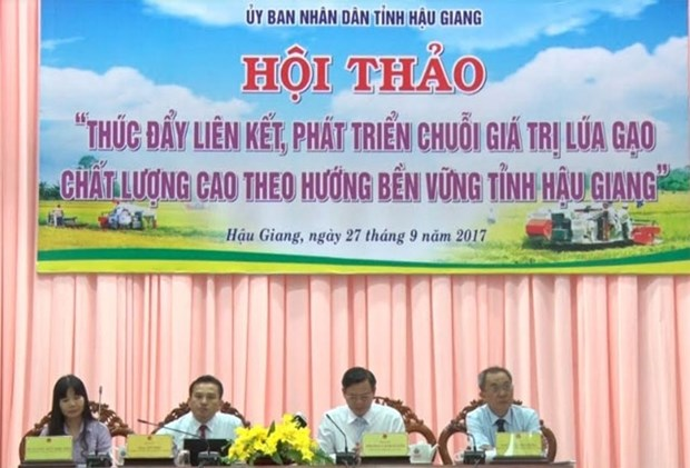 Conference seeks ways to build sustainable rice production chains hinh anh 1