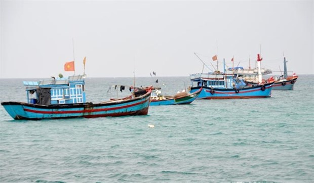 Up to 1.87 billion USD projected for offshore fishing development hinh anh 1