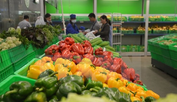 Vegetable, fruit exports estimated at 2.64 billion USD hinh anh 1