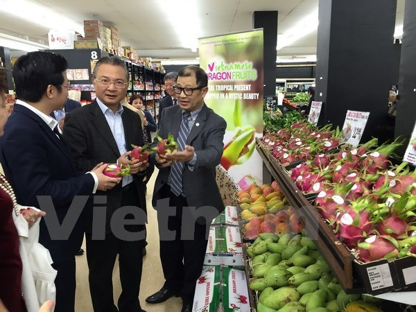 """Vietnamese Dragon Fruit Day"" goes vibrant in Australia hinh anh 1"