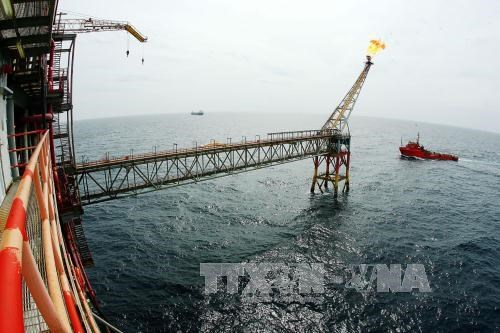 Vietsovpetro production hits 50 billion cu.m of gas hinh anh 1