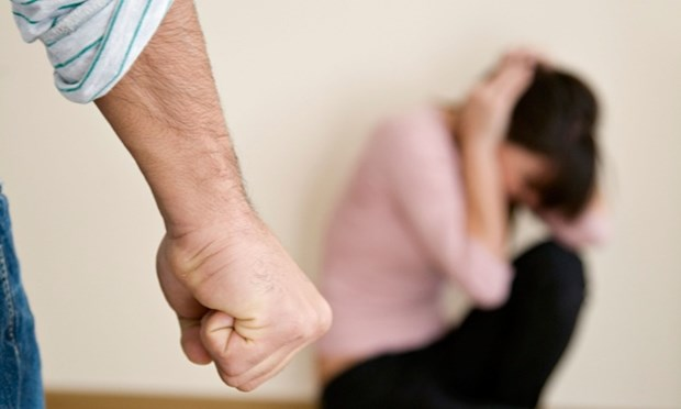 Vietnam promotes fight against domestic violence hinh anh 1