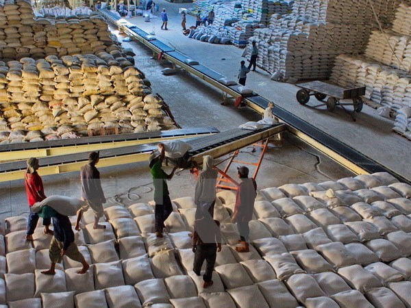 Can Tho to ship first rice batch to Iran hinh anh 1
