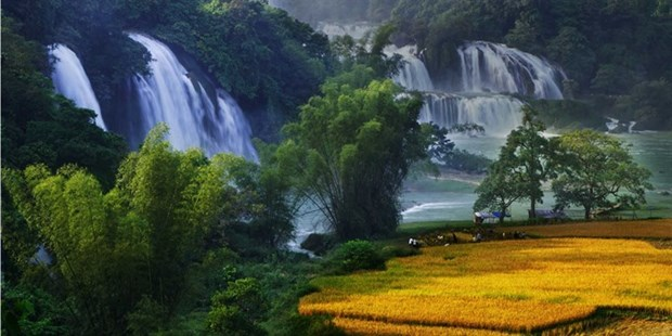 Festival in honour of Vietnam's widest waterfall hinh anh 1