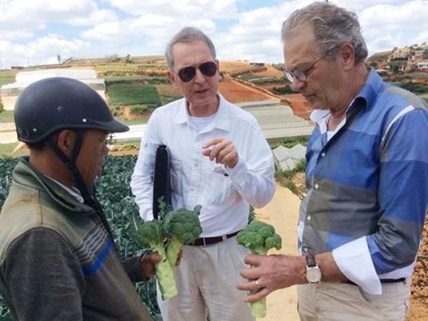 Dutch organisation helps Vietnam with sustainable development hinh anh 1