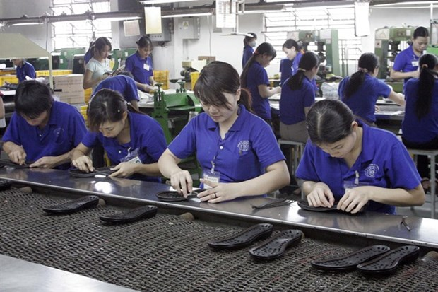 Further fee cuts needed to support firms hinh anh 1