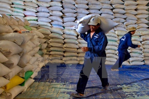 Cambodia exports over 400,000 tonnes of rice in nine months hinh anh 1