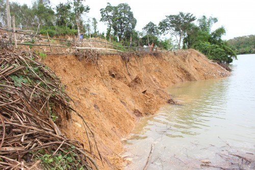 Quang Binh residents worried about riverbank erosion hinh anh 1