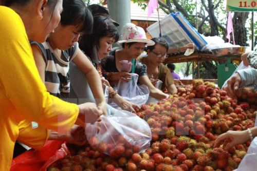 Enterprises advised to focus on organic fruit, vegetable exports to EU hinh anh 1