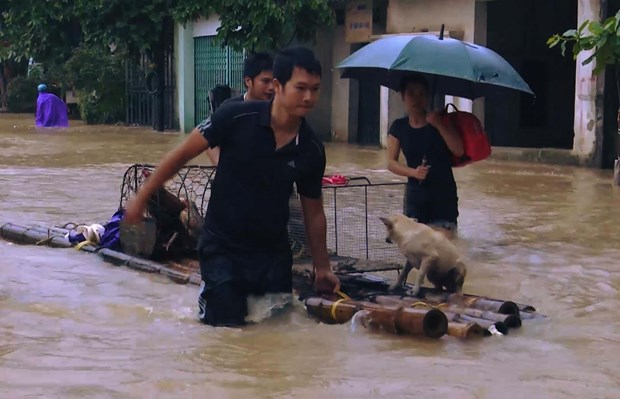 Seven deaths, four missing in floods reported in Thanh Hoa hinh anh 1