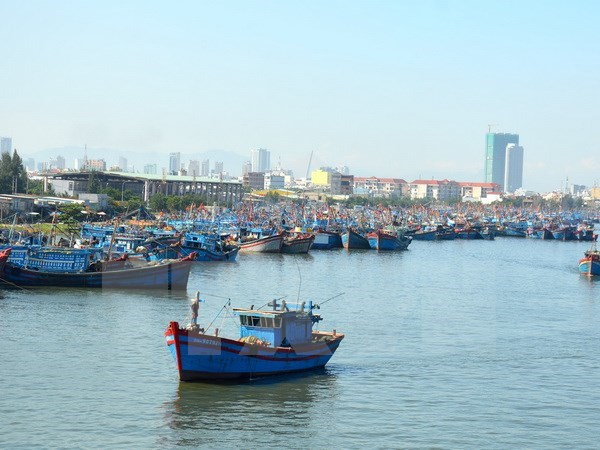 Fishermen must be treated humanely: FM spokesperson hinh anh 1