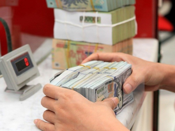Foreign exchange reserves hit record 45 billion USD hinh anh 1