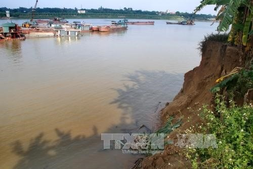 Sand mining erodes farm land in northern provinces hinh anh 1