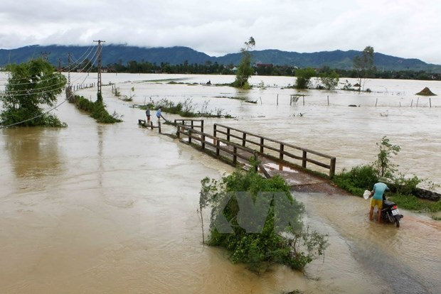 HCM City raises fund for flood-hit people in north, central hinh anh 1
