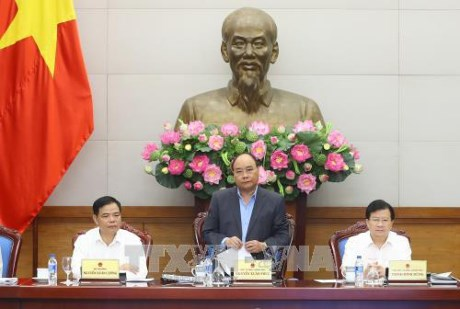 PM asks for clarifying responsibility in forest management hinh anh 1