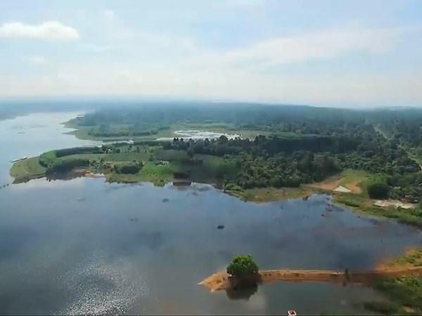 Southern Dong Nai province to build wildlife safari hinh anh 1