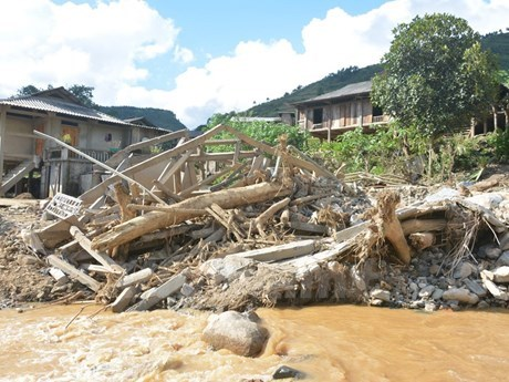 Flood-hit areas brace for diseases hinh anh 1